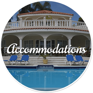 View Accommodations at Vacations in Paradise